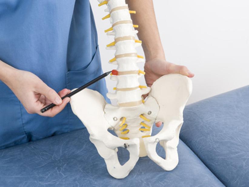 ¿Cómo es la columna vertebral? Equipo de la Torre te lo cuenta